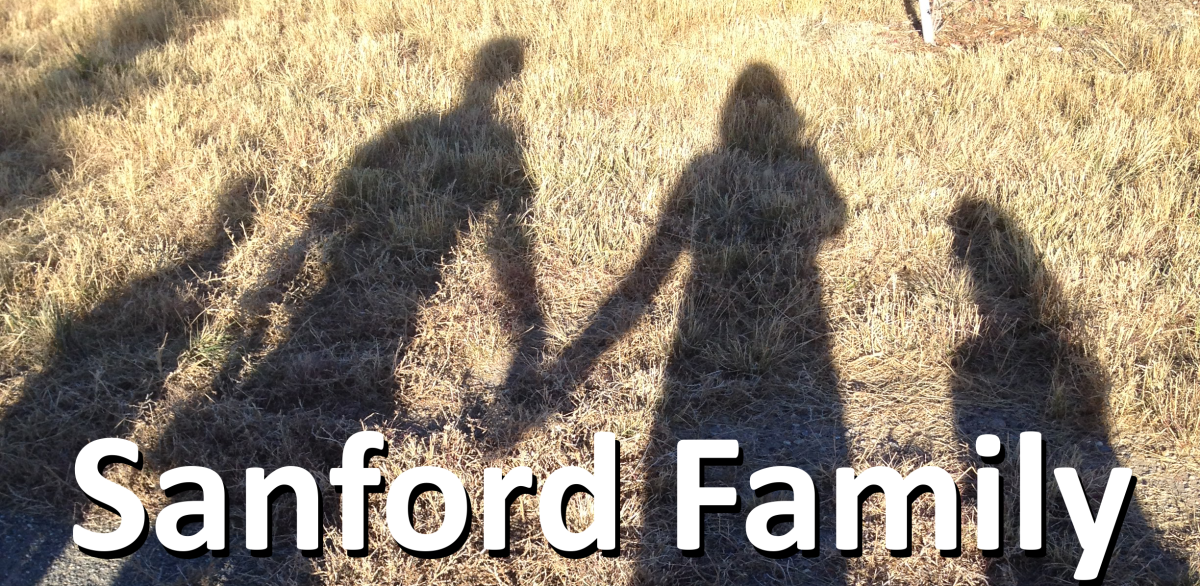Sanford Family Blog